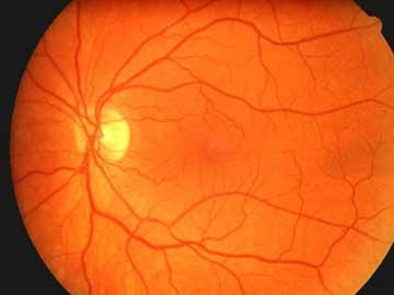 Diagnosis and Treatment of Eye Diseases and Injuries